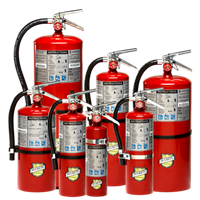 Picture of 13315 - 2.5 lb ABC Dry Chemical Extinguisher