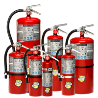 Picture of 11340 - 10 lb ABC Dry Chemical Extinguisher